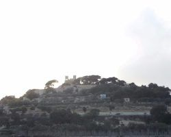 18 Marzo 2016 CAPITALES DE MALTA, Mdina, Valleta, Mosta (111)