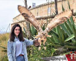 4 Abril Escapada por el Sur Malta (10)
