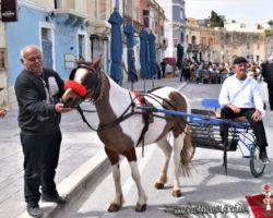 4 Abril Escapada por el Sur Malta (55)
