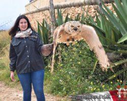 4 Abril Escapada por el Sur Malta (8)
