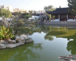 19 Agosto A vueltas por Malta jardin la serenidad (2)