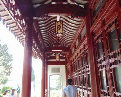 26 Marzo Escapada por el sur - Jardin chino la Serenidad (10)