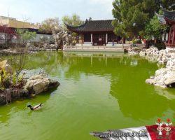 26 Marzo Escapada por el sur - Jardin chino la Serenidad (6)