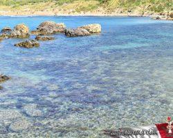 31 Marzo Nos fuimos de trekking por Malta Golden bay y Gran tuffieha (21)