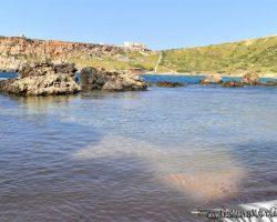 31 Marzo Nos fuimos de trekking por Malta Golden bay y Gran tuffieha (27)
