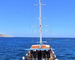 25 Julio Comino Malta Blue Lagoon (25)
