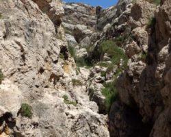 Agosto Curso escalada Malta (55)