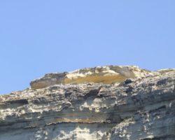 Gozo y Comino (Abril 2013) (105)