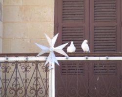 Gozo y Comino (Abril 2013) (81)