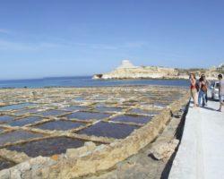 Gozo y Comino (Abril 2013) (82)
