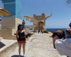Junio Blue Grotto Malta (11)