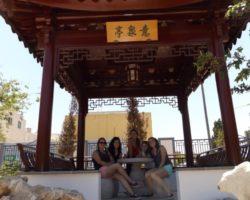 Junio Chinese Garden Santa Lucija Malta (18)