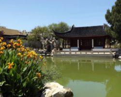 Junio Chinese Garden Santa Lucija Malta (25)