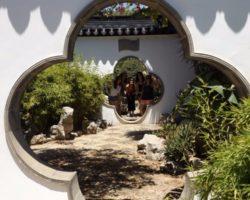 Junio Chinese Garden Santa Lucija Malta (30)