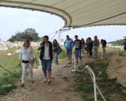 Marzo templos Megalíticos Malta (7)