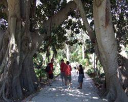 Visitas, turismo y actividades en Malta 2012 (1)