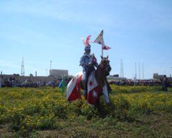 Visitas, turismo y actividades en Malta 2012 (155)