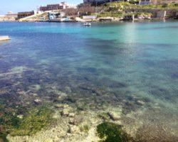 Visitas, turismo y actividades en Malta 2012 (158)
