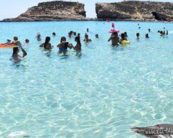 1 Septiembre Blue Lagoon, Comino (18)