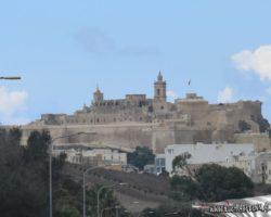 21 Agosto Crucero por Gozo y Comino (6)