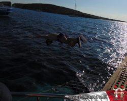 25 Septiembre Comino, Blue Lagoon, Crucero (57)