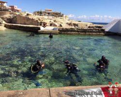 28 Marzo Escuela de Buceo Que Hacer en Malta (12)