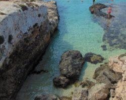7 Septiembre Especial Comino Cave and Cliffs (45)