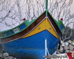 Gozo y Bethlehem (65)