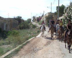 Horse Riding (Mayo 2013) Malta (16)