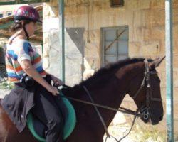 Horse Riding (Mayo 2013) Malta (17)