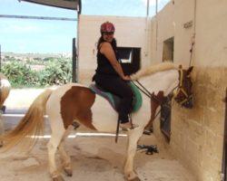 Horse Riding (Mayo 2013) Malta (2)