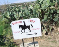 Horse Riding (Mayo 2013) Malta (20)