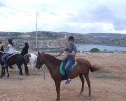 Horse Riding (Mayo 2013) Malta (28)