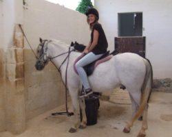 Horse Riding (Mayo 2013) Malta (29)