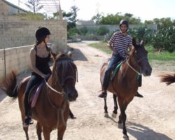 Horse Riding (Mayo 2013) Malta (38)