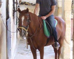 Horse Riding (Mayo 2013) Malta (4)