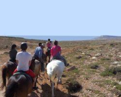 Horse Riding (Mayo 2013) Malta (40)