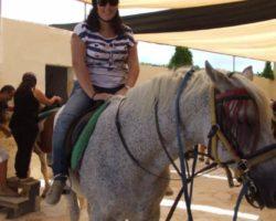 Horse Riding (Mayo 2013) Malta (44)