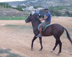 Horse Riding (Mayo 2013) Malta (46)