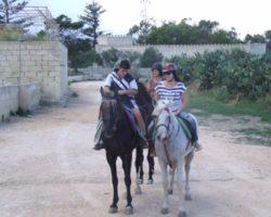 Horse Riding (Mayo 2013) Malta (47)