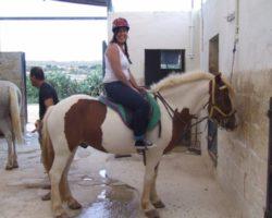 Horse Riding (Mayo 2013) Malta (48)