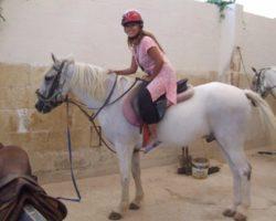 Horse Riding (Mayo 2013) Malta (49)
