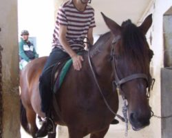 Horse Riding (Mayo 2013) Malta (51)