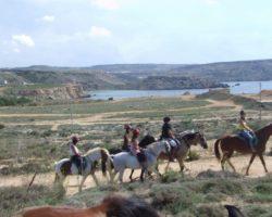 Horse Riding (Mayo 2013) Malta (53)