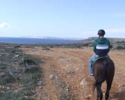 Horse Riding (Mayo 2013) Malta (54)