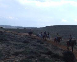 Horse Riding (Mayo 2013) Malta (55)