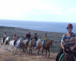 Horse Riding (Mayo 2013) Malta (56)