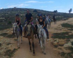 Horse Riding (Mayo 2013) Malta (57)