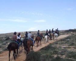 Horse Riding (Mayo 2013) Malta (6)