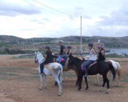 Horse Riding (Mayo 2013) Malta (64)